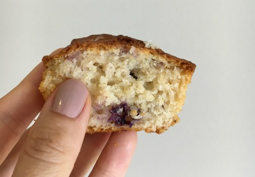 Magic Wholemeal Muffin Blueberry half